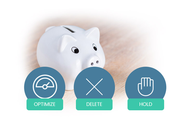 Don't Break the Bank on your Budget. Optimize, Delete, or Hold